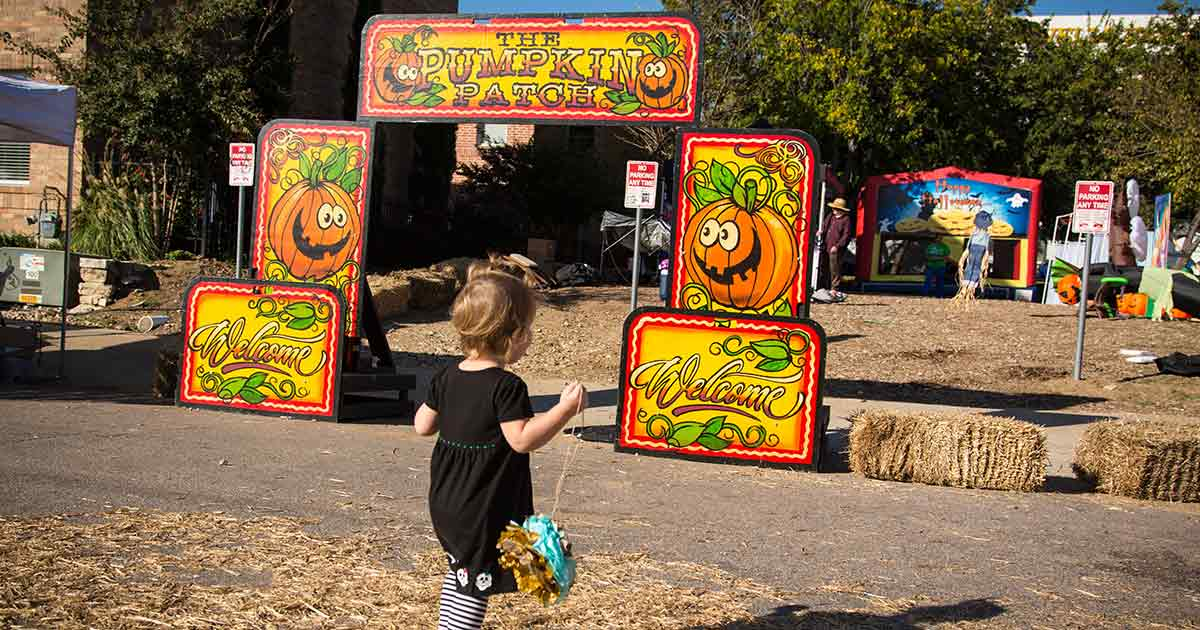 Denton Day of the Dead Pumpkin Patch